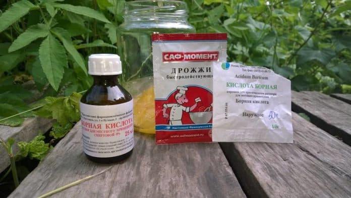 ингредиенты для борьбы с муравьями