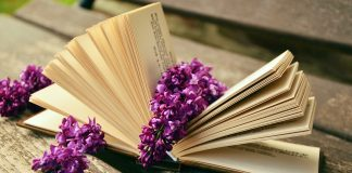 книга с цветком