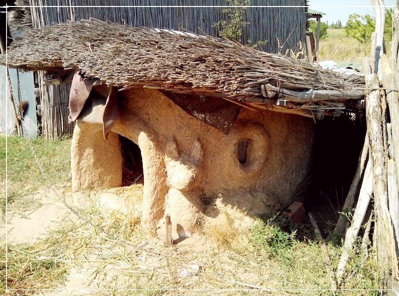 собачья будка из Самана