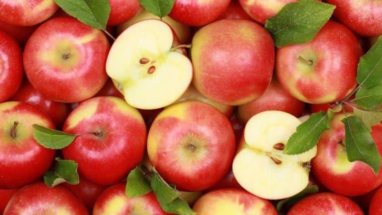 Топ-5 продуктов для здоровья почек