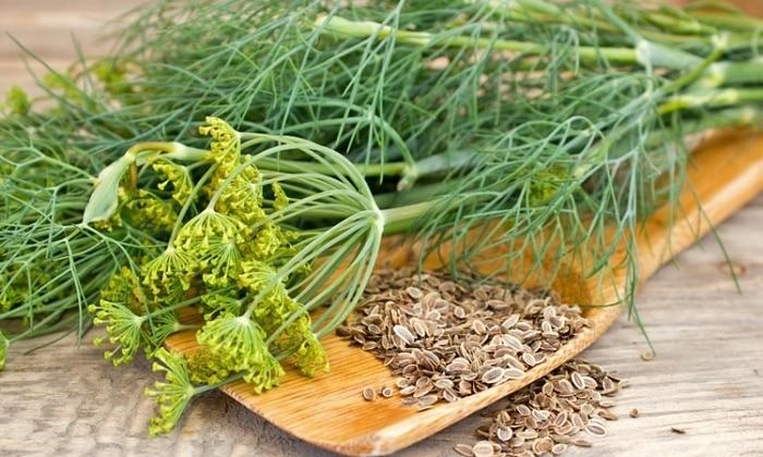 Какие травы понижают давление и полезны для сосудов головного мозга