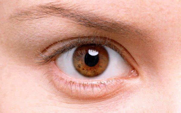 Дергается верхнее веко левого глаза: причины