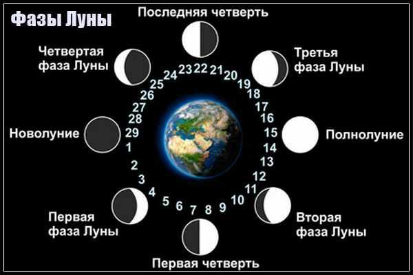 Какого числа Новолуние в августе 2019 года: таблица