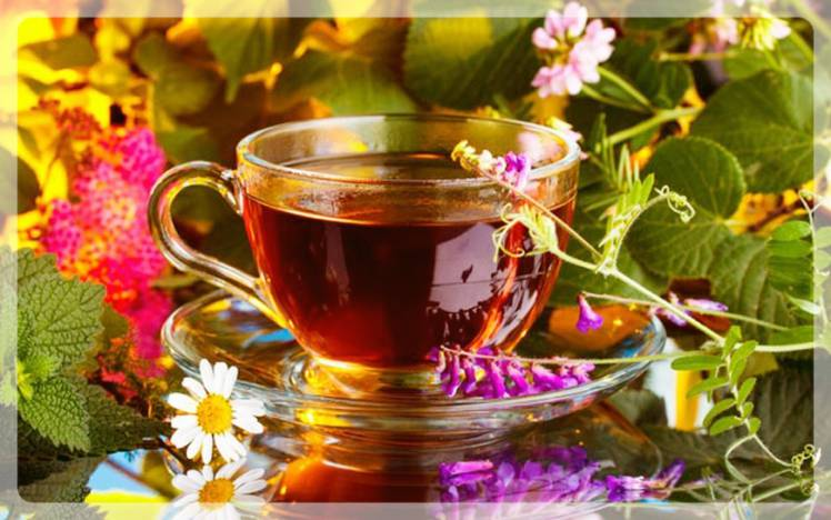 чай для улучшения обмена веществ