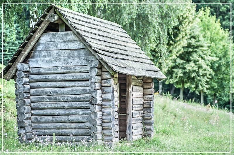 dom_v_lesu